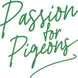 Passion for Pigeons